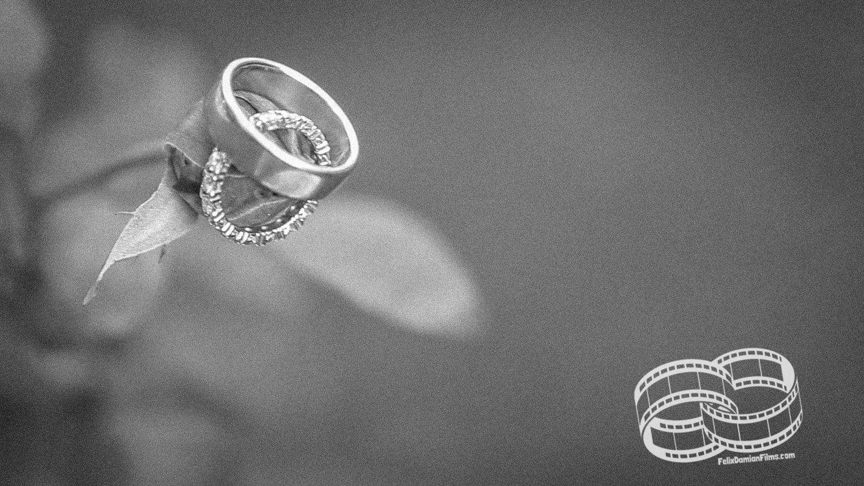 Fotógrafos y videografos de bodas